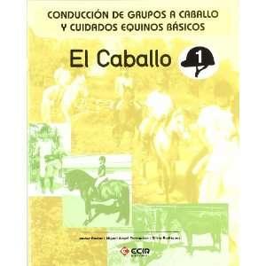 ) Javier Pastor; Miguel Angel Torregrosa; Silvia Rodriguez Books