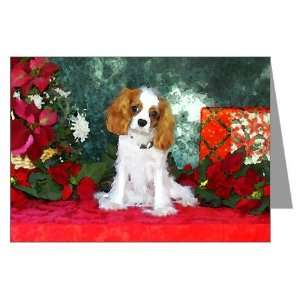 Cavalier King Charles Spaniel Christmas Cards Pets Greeting Cards Pk