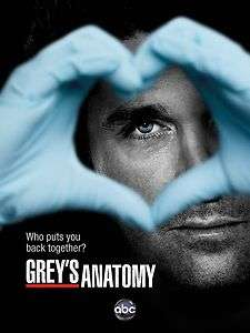 TV Poster   Greys Anatomy, abc, 12 x 8 (6)