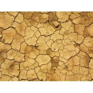 Cracked and Barren Dry Dirt Background Stretched Canvas Poster Print