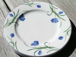 Garden Poetry by Mikasa Y4005 LOT 2 SALAD PLATES blue