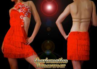Custom RED SAMBA CHa CHA FRINGE Crystal salsa latin dance dress