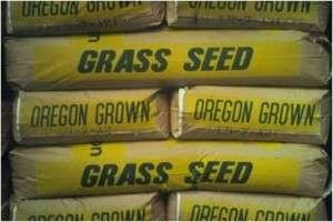 Sun & Shade Grass Lawn Turf Seed 50lb bag