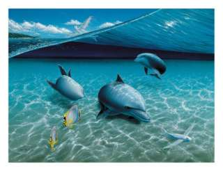 The Chase, Hawaiian Spinner Dolphins Prints by Mark Mackay at