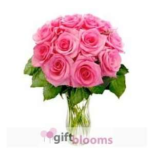 12 Pink Long Stem Roses  Grocery & Gourmet Food
