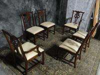 MAHOGANY CHIPPENDALE LINK TAYLOR DINING ROOM CHAIRS WOW