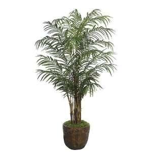 Autograph Foliages P 70323 8 ft. Areca Palm Tree: Home & Kitchen