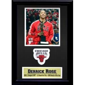 Encore Select 189 BBCB1 Chicago Bulls Derrick Rose No. 1 12X18 Stadium