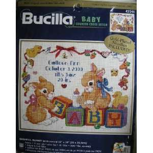 Baby Birth Record Counted Cross Stitch Kit Arts, Crafts & Sewing