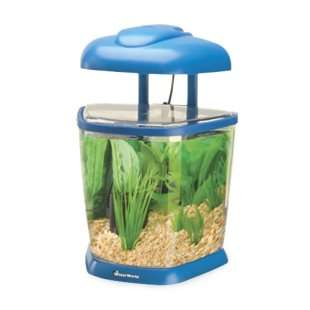 Aquarius Complete 2.5 Gallon Desktop Aquarium   Fish Tank Aquariums at