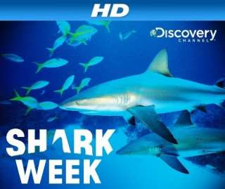 Shark Week [HD]: Season 3, Episode 2 Surviving Sharks [HD