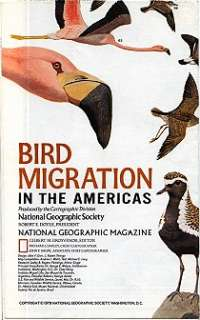 National Geographic Map American BIRD MIGRATION ROUTES